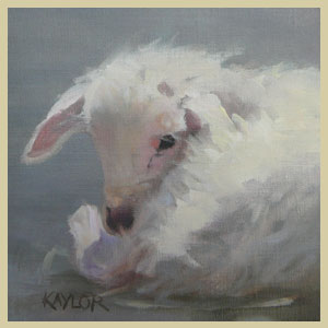 Another Little Lamb